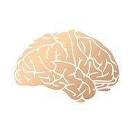 The Neurology Group