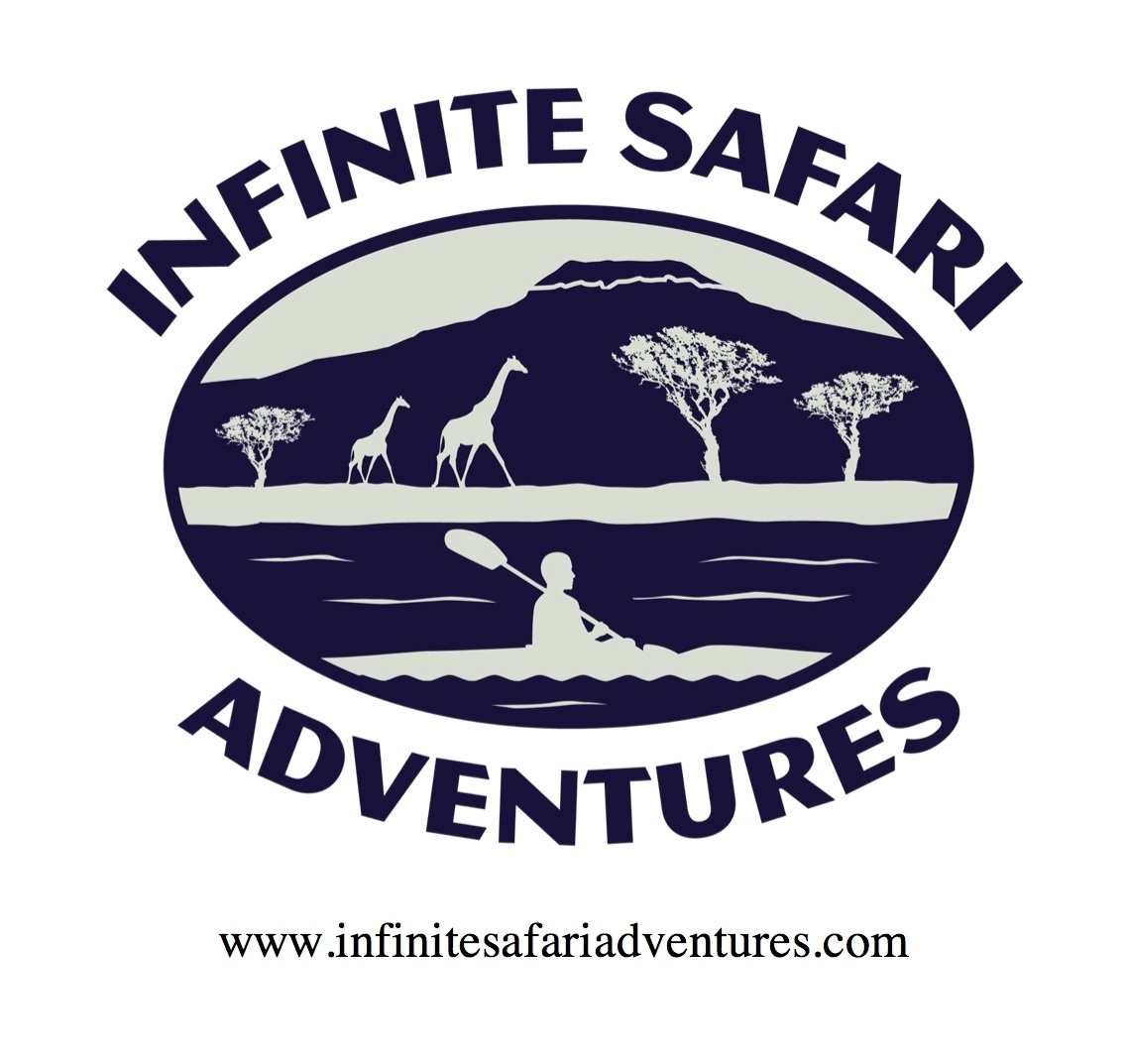 Infinite Safari Adventures image 1