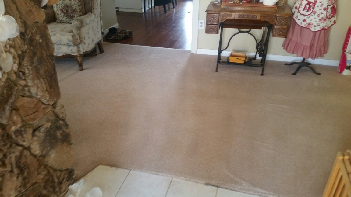 CleanDay Carpet Care image 10