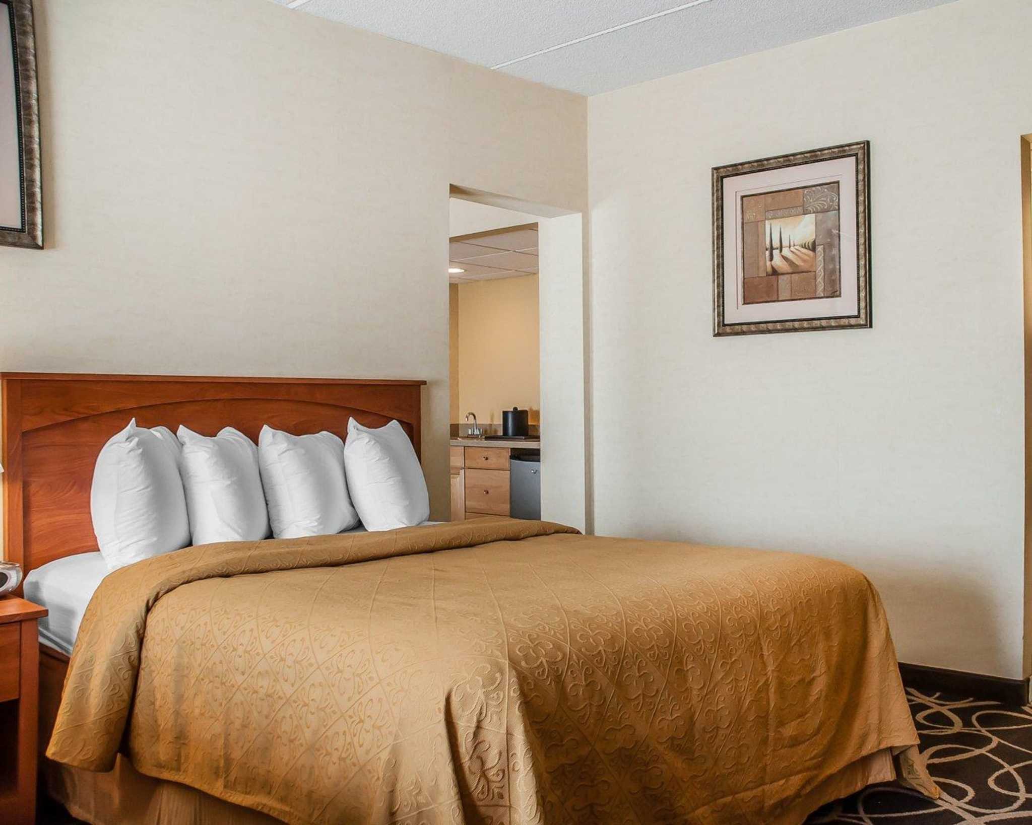 Quality Hotel & Suites At The Falls image 30
