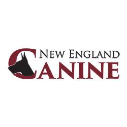 New England Canine image 0