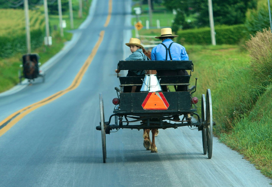 A is for Amish Buggy Rides image 8