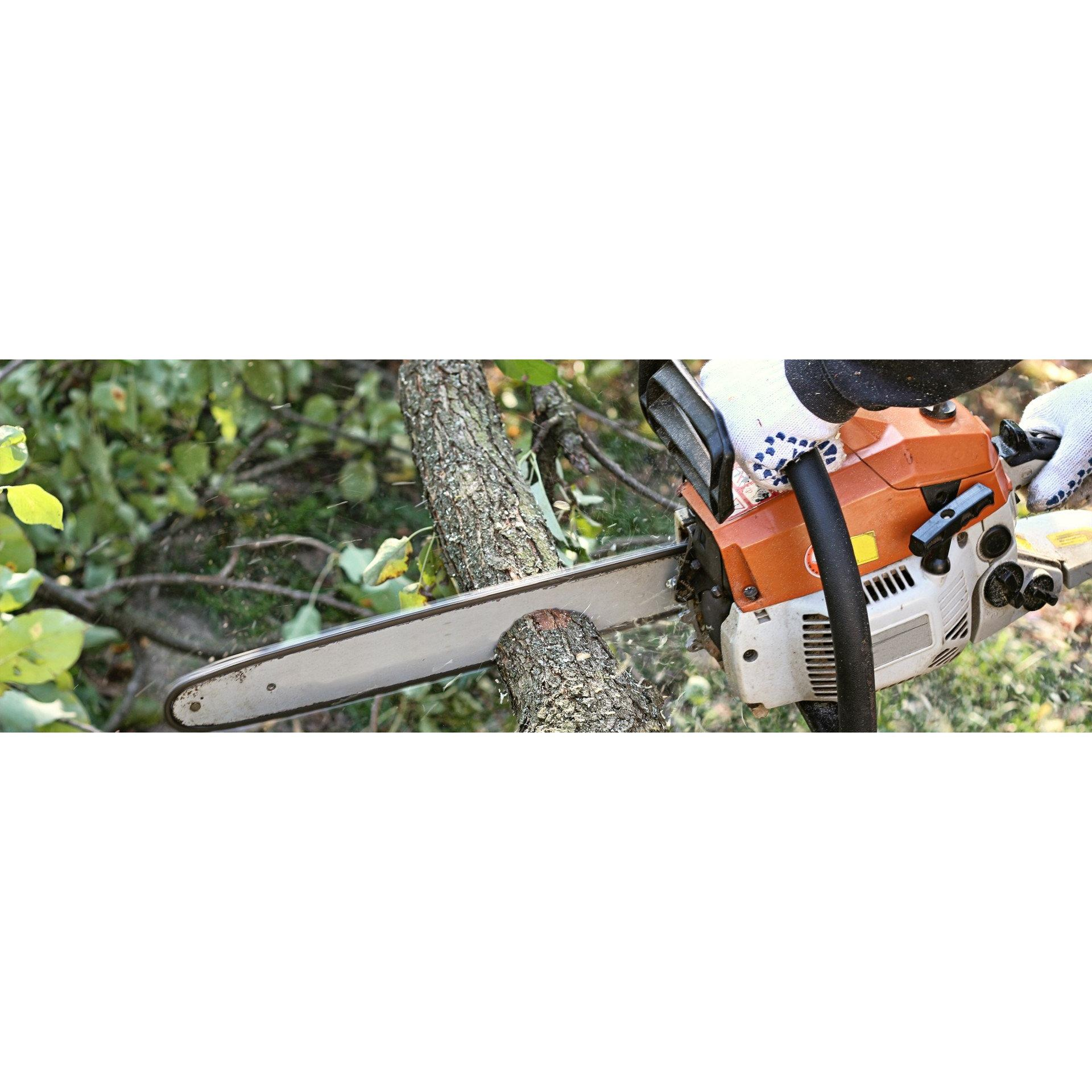 Culley Tree Service