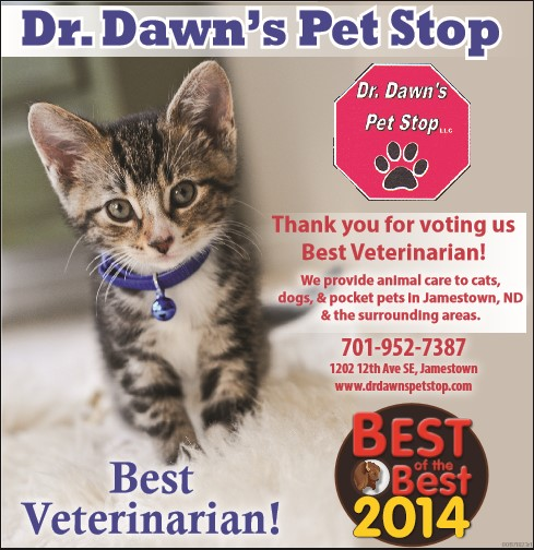 Dr. Dawn's Pet Stop LLC image 1