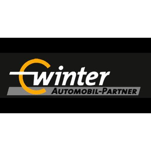 Winter Automobilpartner GmbH & Co. KG