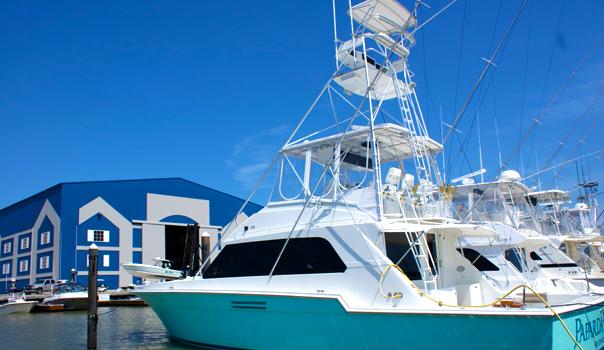 Paparda rey fishing charters in galveston tx 77550 for Fishing charters galveston tx