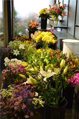 Vernon Flower Shop in Vernon
