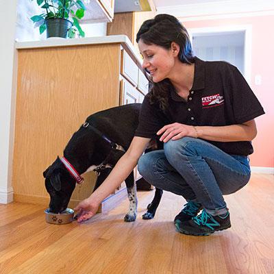 Fetch! Pet Care image 9