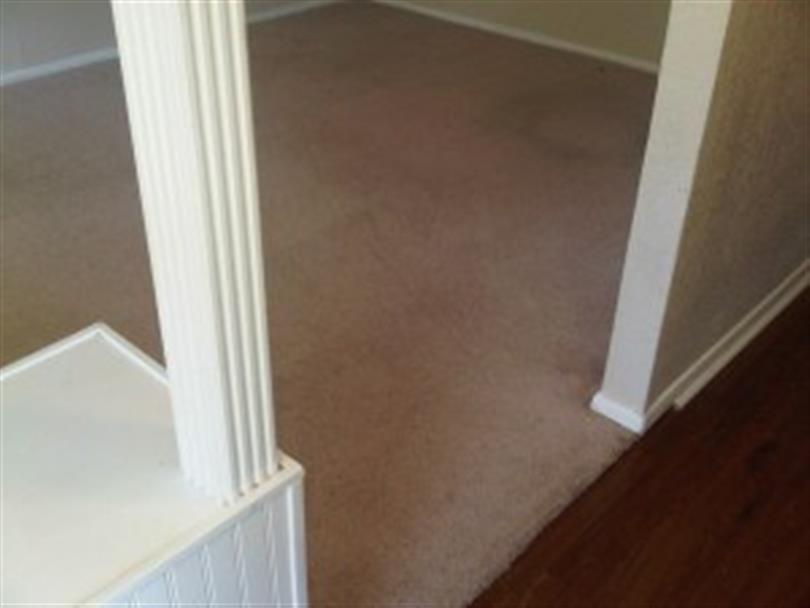 Lubbock Carpet Cleaning Service image 2