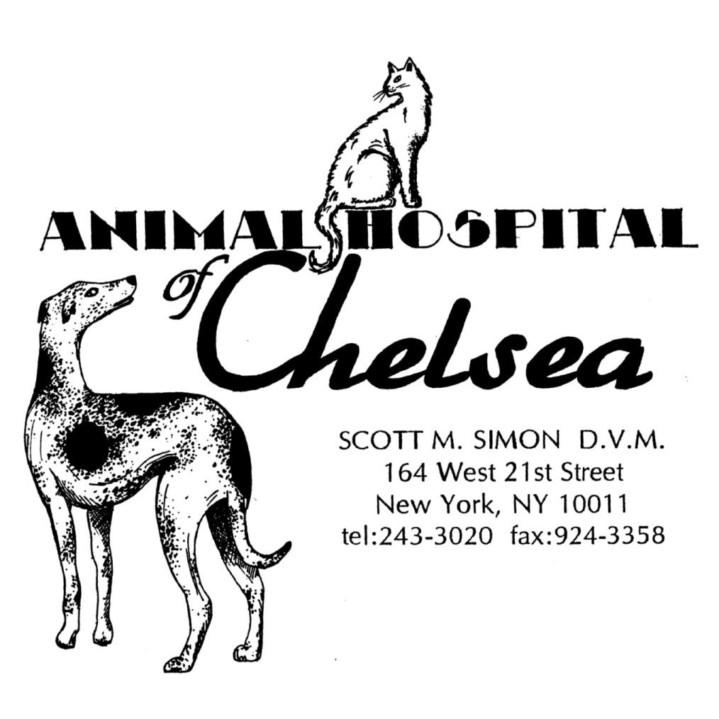 Animal Hospital Of Chelsea