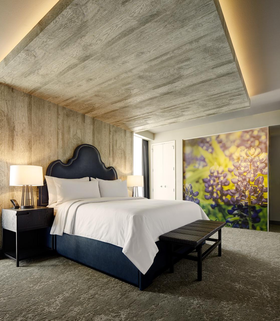 Archer Hotel Austin image 8