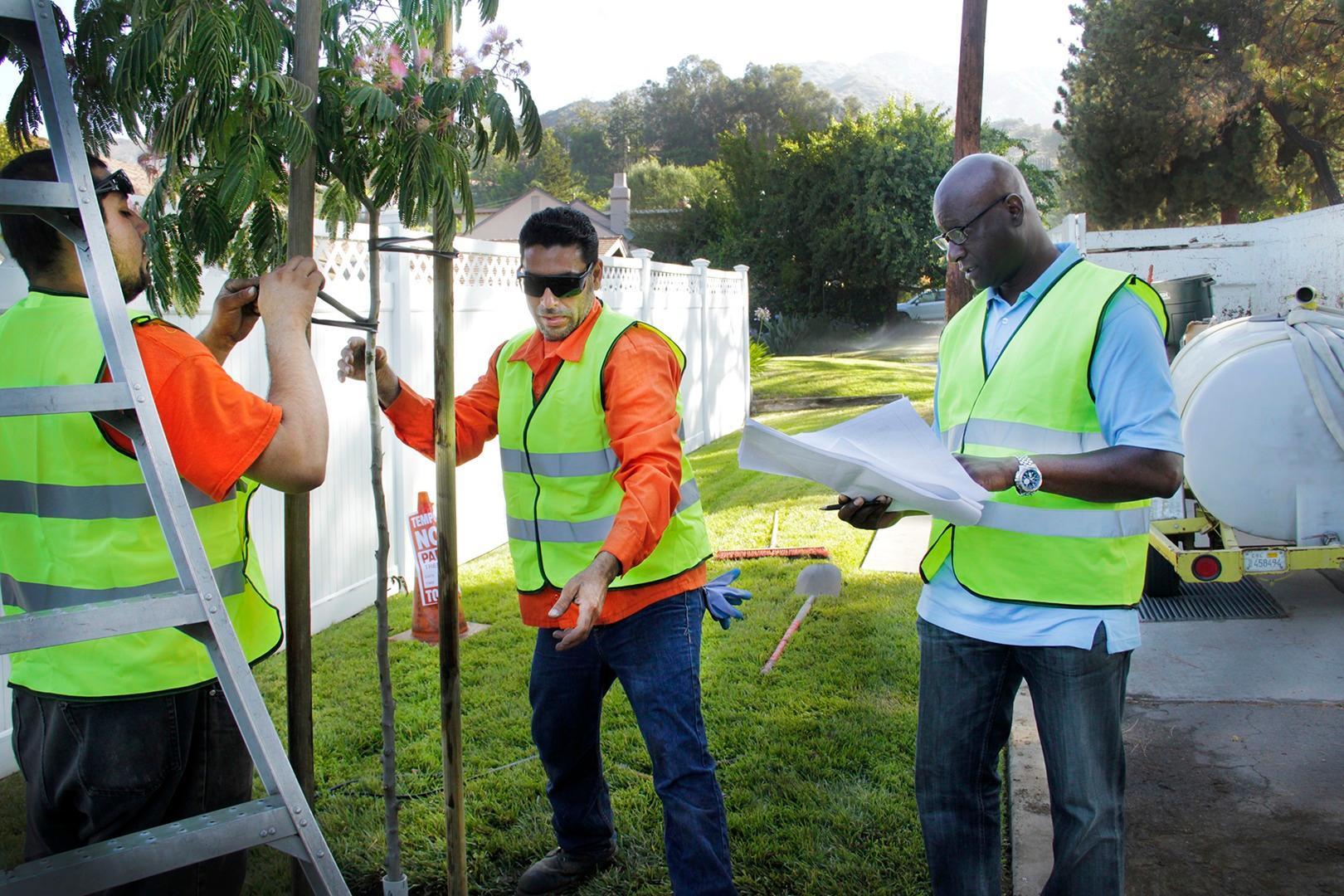 Flintridge Tree Care image 1