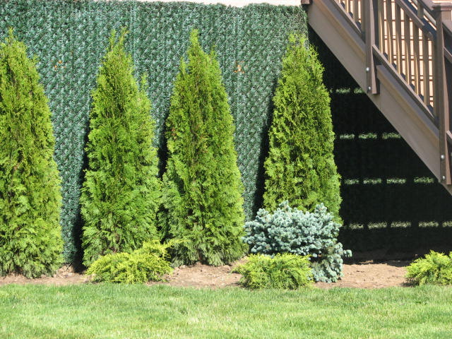 Superior Lawns And Landscaping