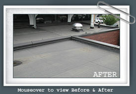 Service Roofing Co. image 9