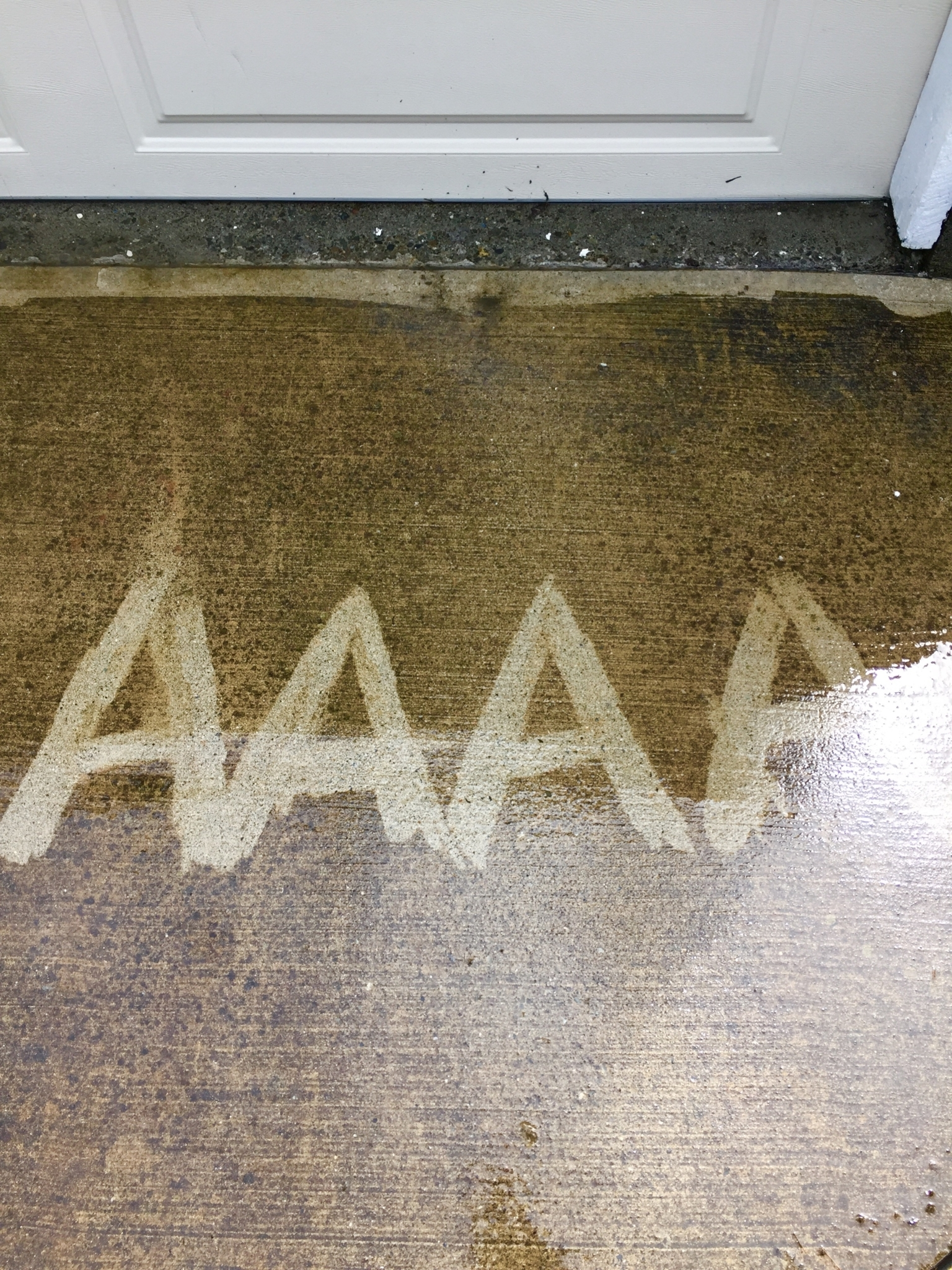 AAAA Pressure Washing Services