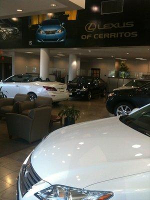 Lexus Of Cerritos 18800 Studebaker Road Cerritos Ca Auto Dealers