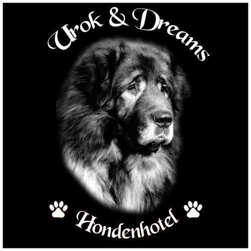 Hondenpension Urok & Dreams