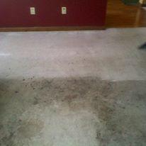 Discount Steamer Carpet & Upholstery Cleaning image 6