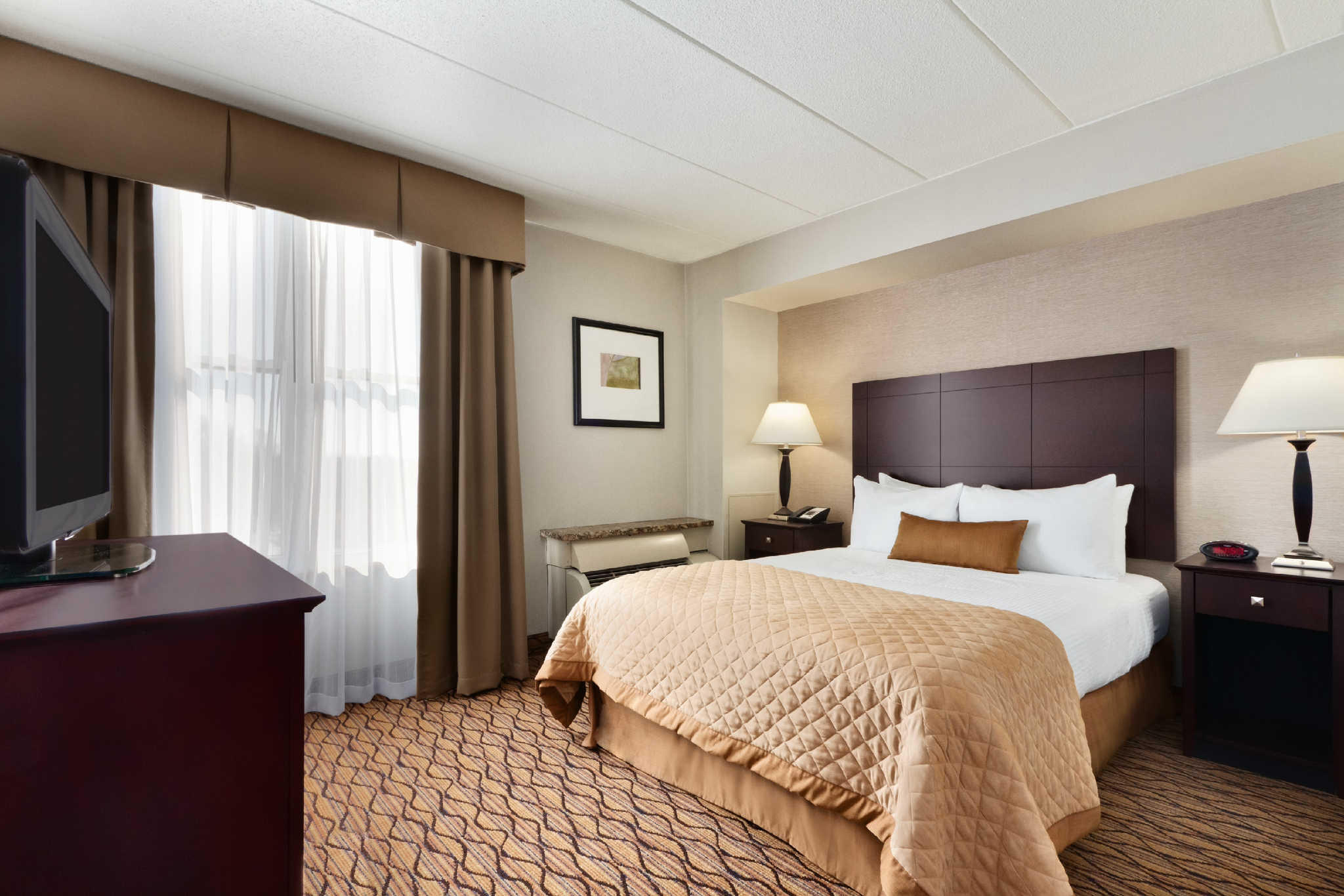 Clarion Hotel image 2