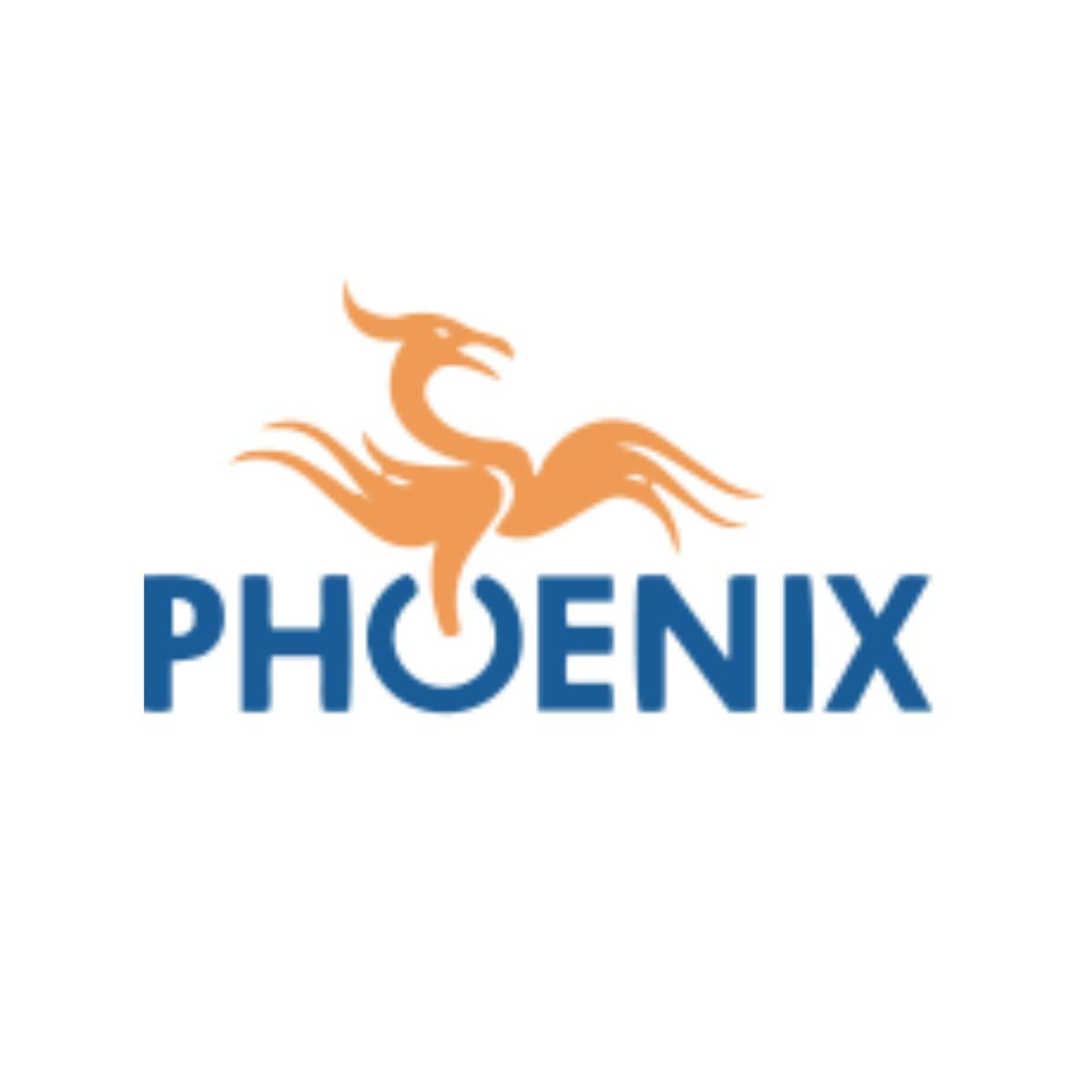 Phoenix Computing Strategies image 3