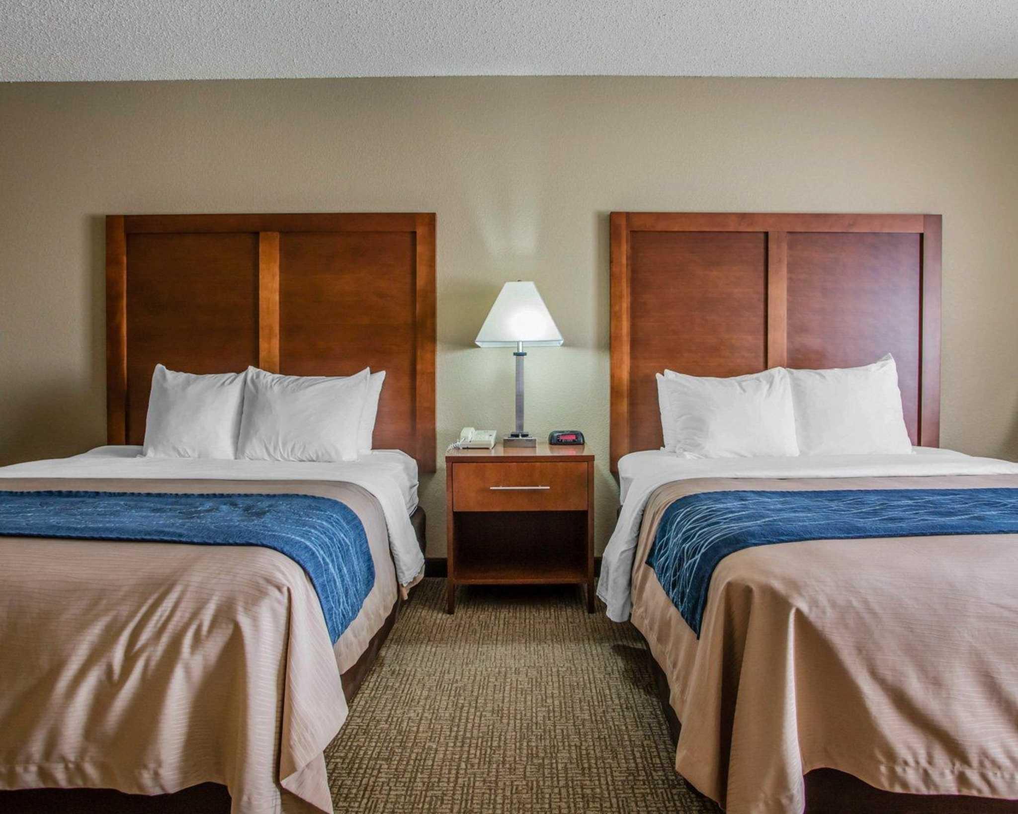 Comfort Inn & Suites Jackson - West Bend image 3