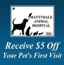 Mattydale Animal Hospital image 0
