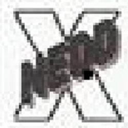 knock out pest control - Detroit, MI - Pest & Animal Control
