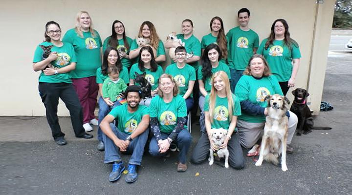 VCA Westside Animal Hospital image 8