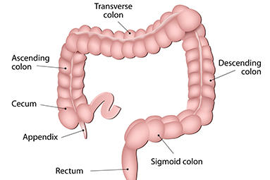 Advanced Gastroenterology image 0