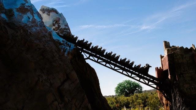 Walt Disney World® Resort image 25