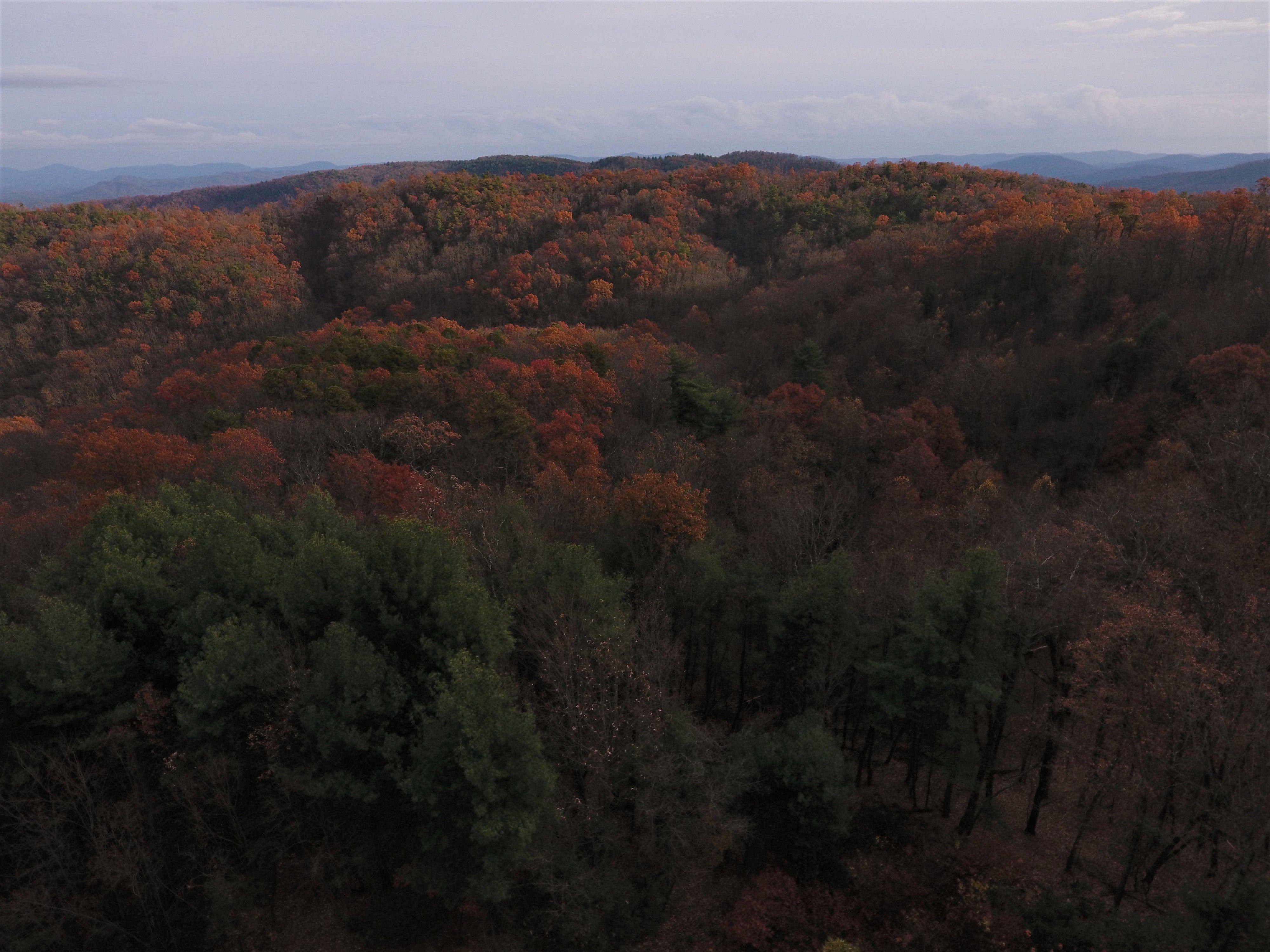 Mountain Property Brokerage image 17