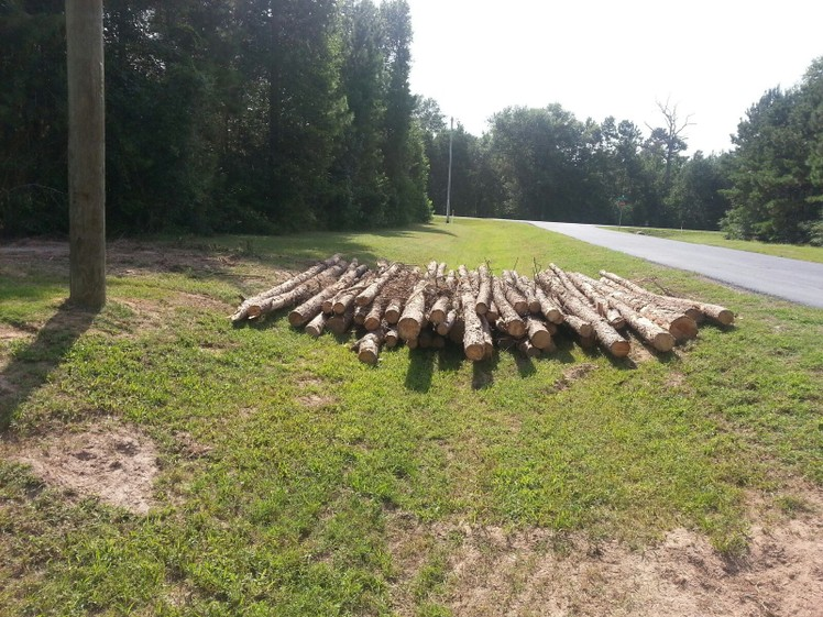 Texas Ace Land Clearing   Land Clearing Houston image 4