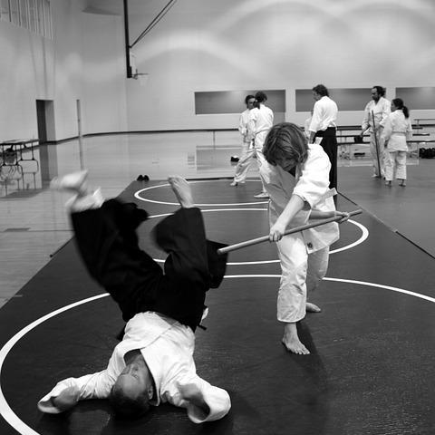 Bulldog Judo Club - Grand Prairie, TX 75050 - (817)271-8561   ShowMeLocal.com