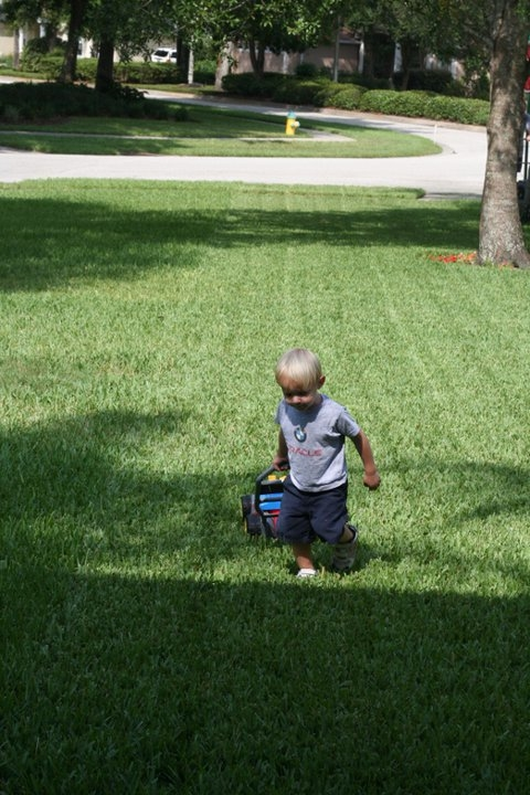Ridgway and Sons Lawn Care - ad image