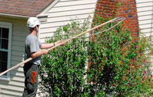Williams A-1 Expert Tree Service