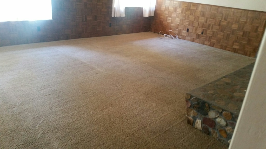 CleanDay Carpet Care image 3
