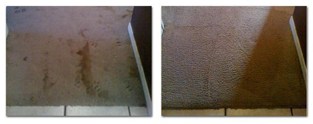 Go Green Dry Carpet Cleaning image 1