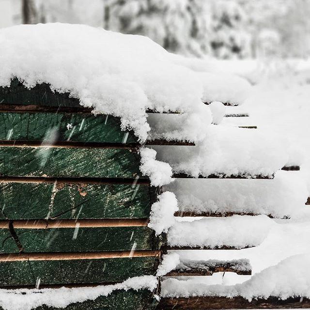 Michigan Timber Shack image 9