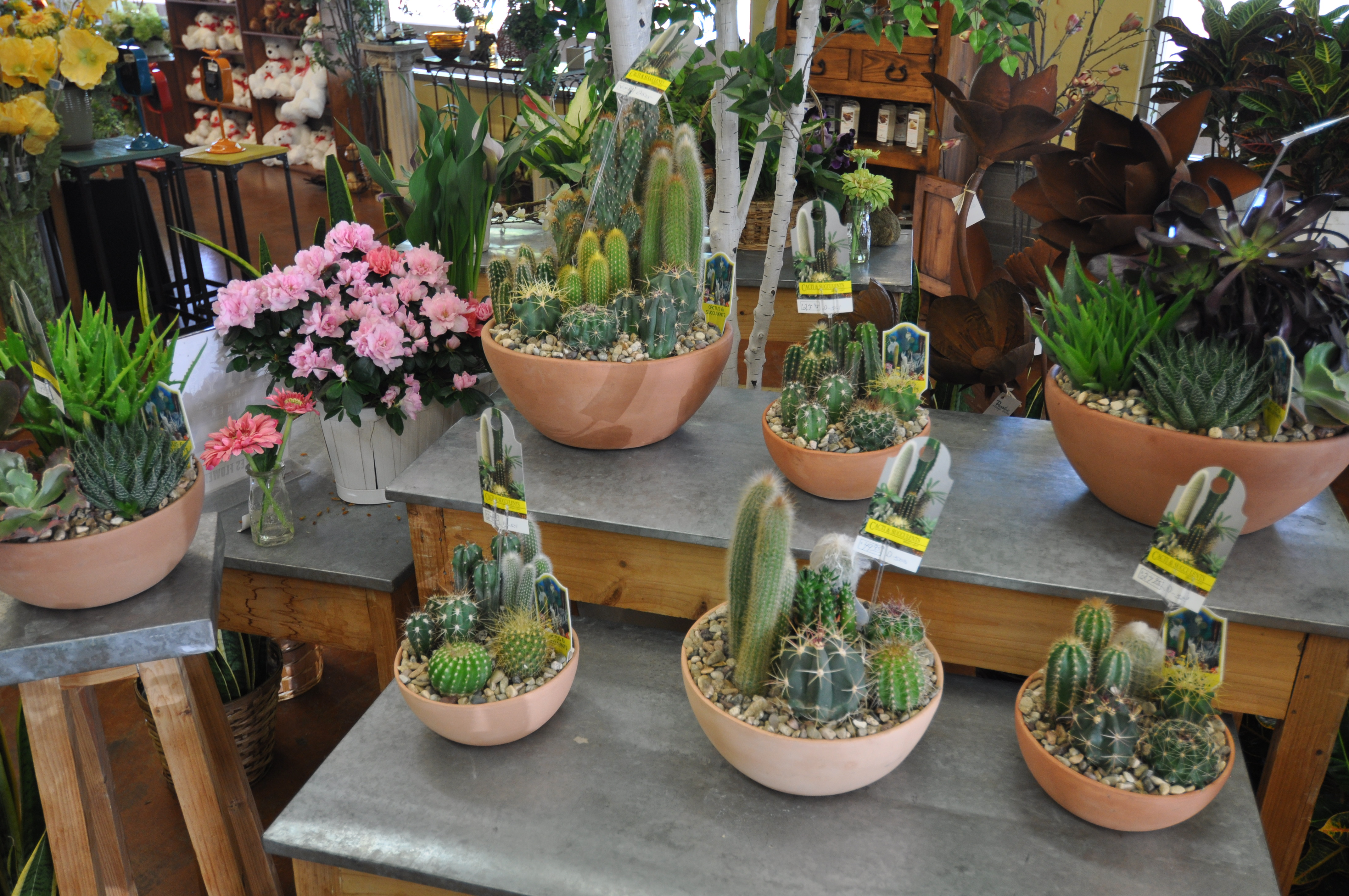 Peoples Flower Shops Far North Location image 16