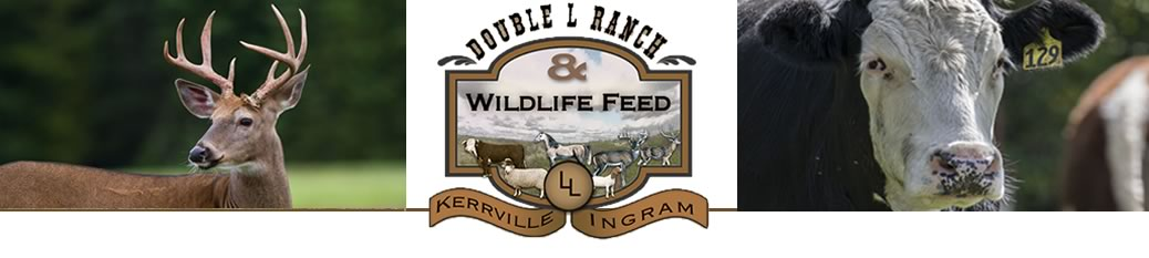 Double L Ranch & Wildlife Feed image 5