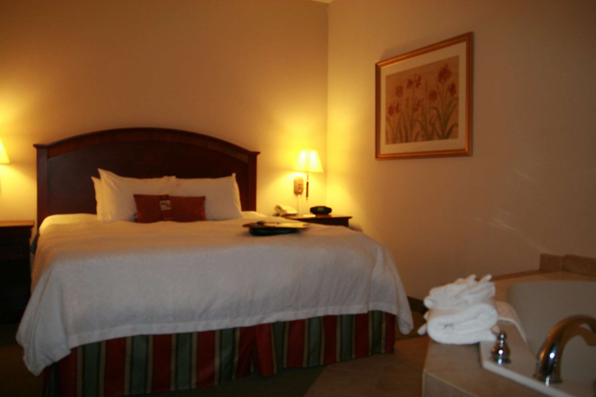 Hampton Inn & Suites Lafayette image 5