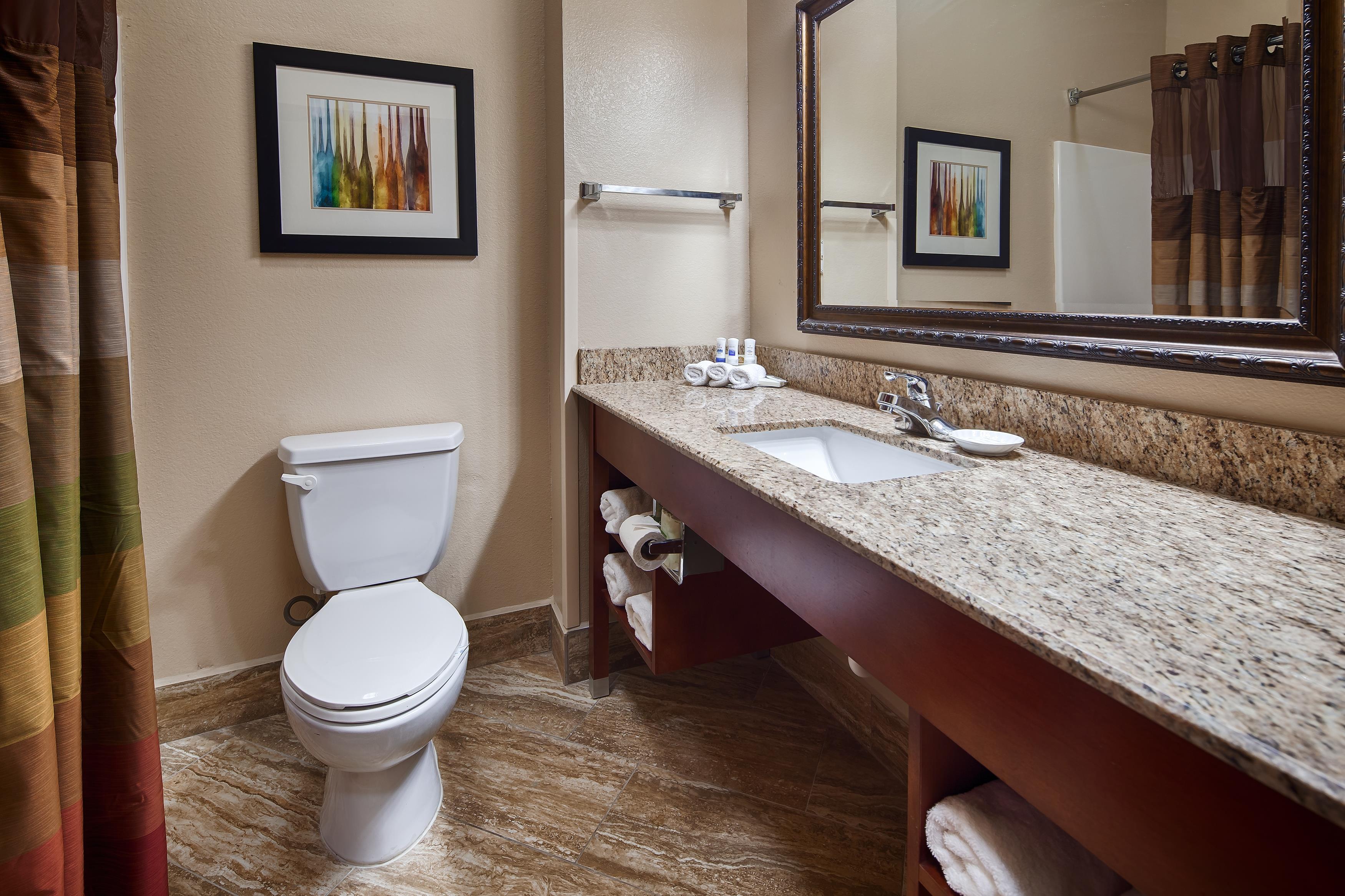 Best Western Plus Monahans Inn & Suites image 7