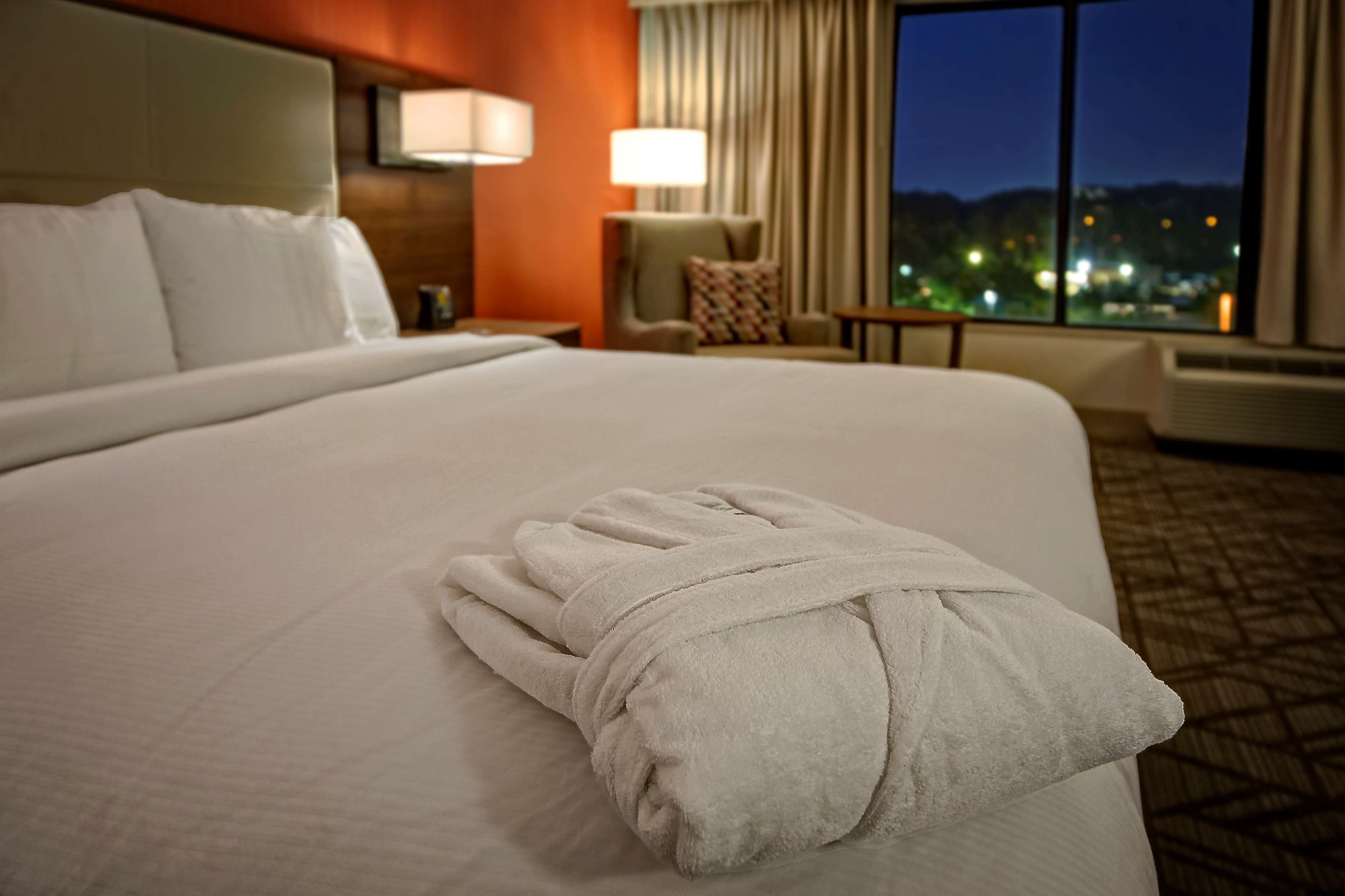 Hilton Knoxville Airport image 13