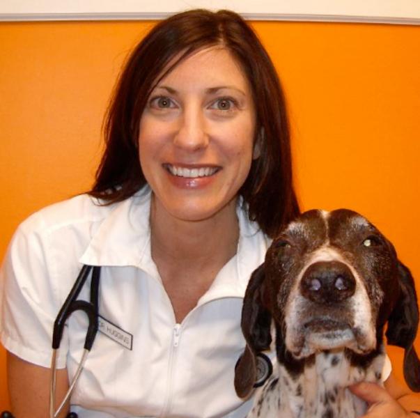 Granville Island Veterinary Hospital Bc