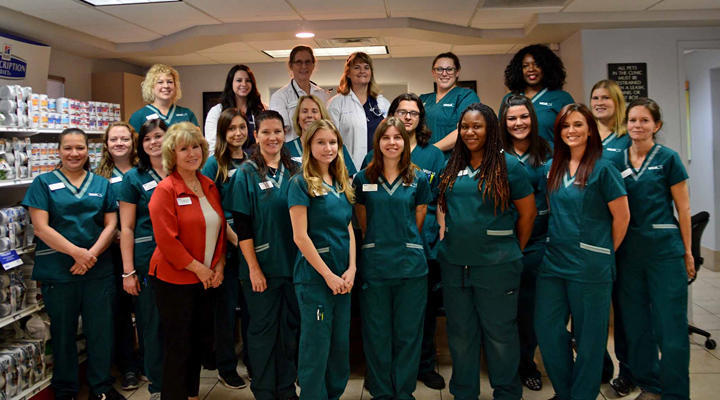 VCA Augustine Loretto Animal Hospital image 1