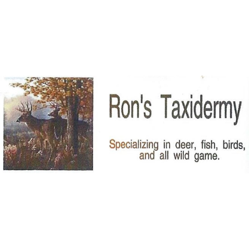 Ron's Taxidermy image 8