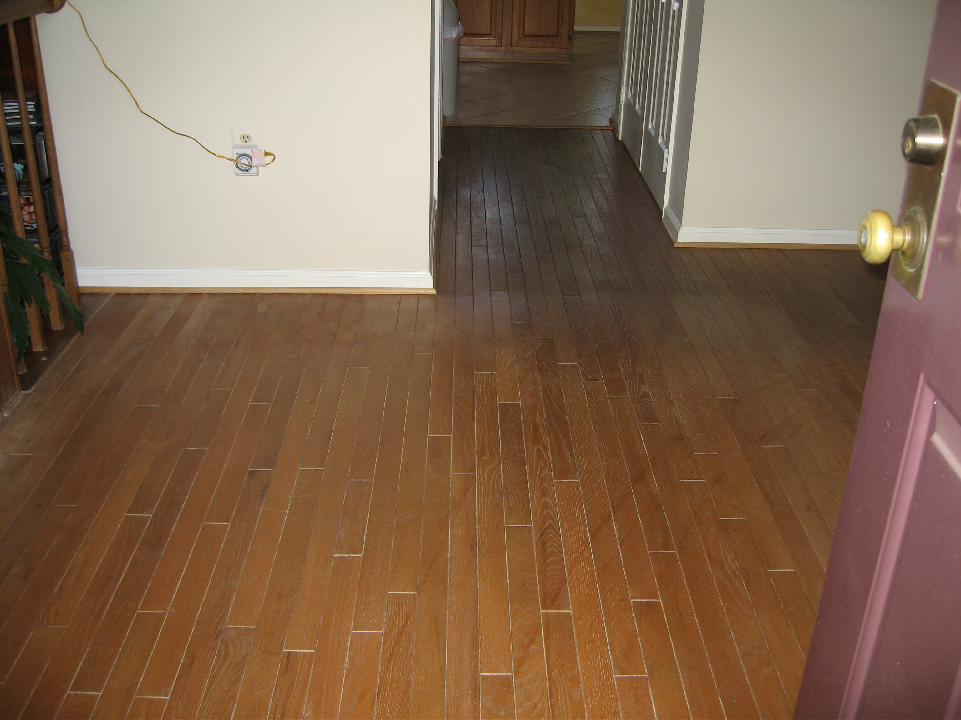 CleanWay Carpet Care image 7