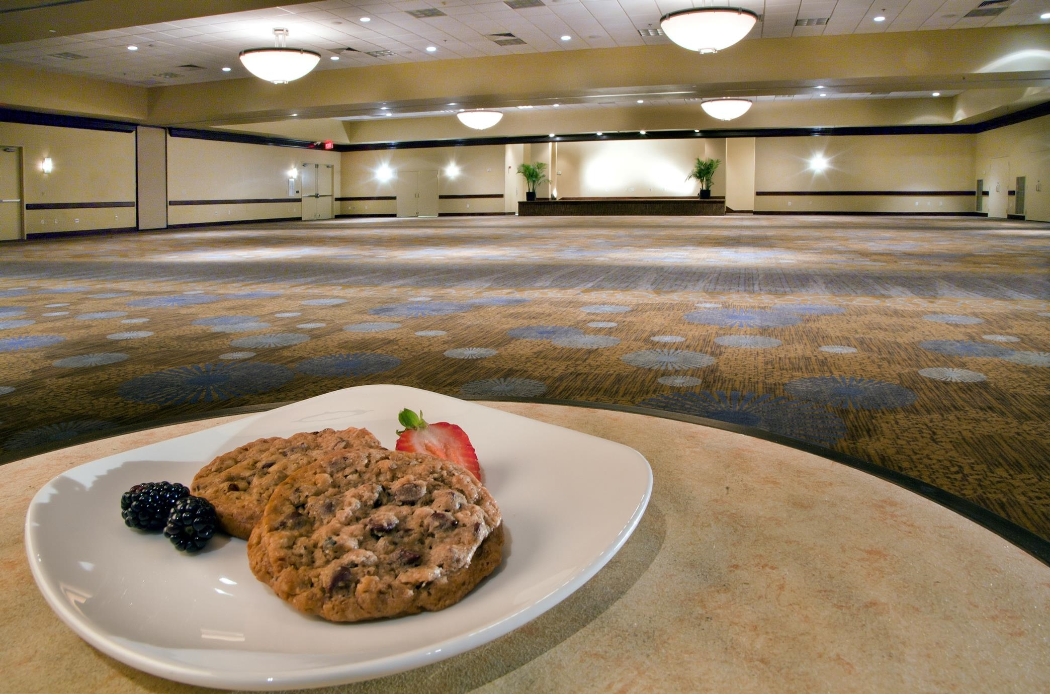 DoubleTree by Hilton Hotel Tampa Airport - Westshore image 37