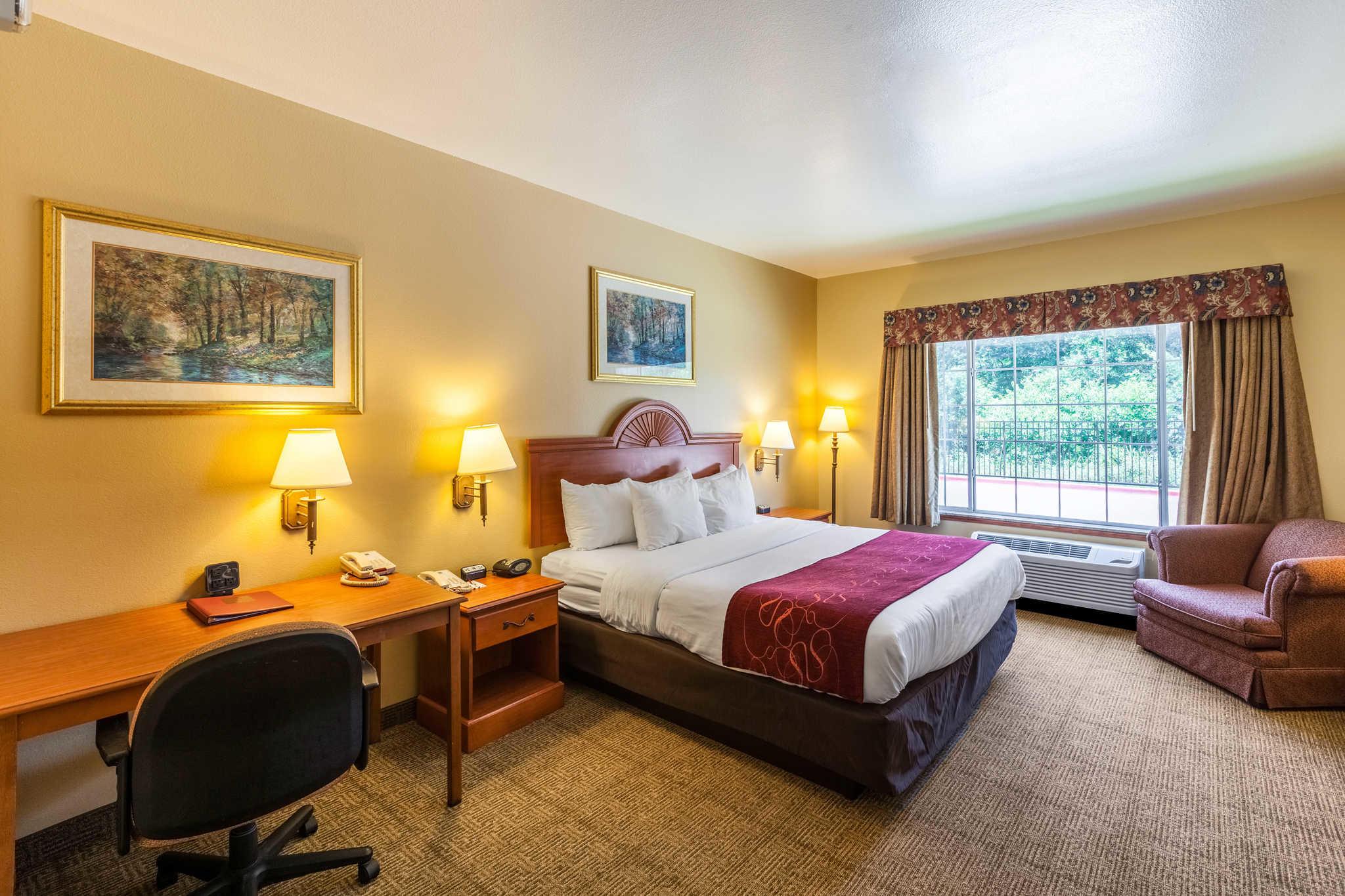Comfort Suites Mesquite image 8
