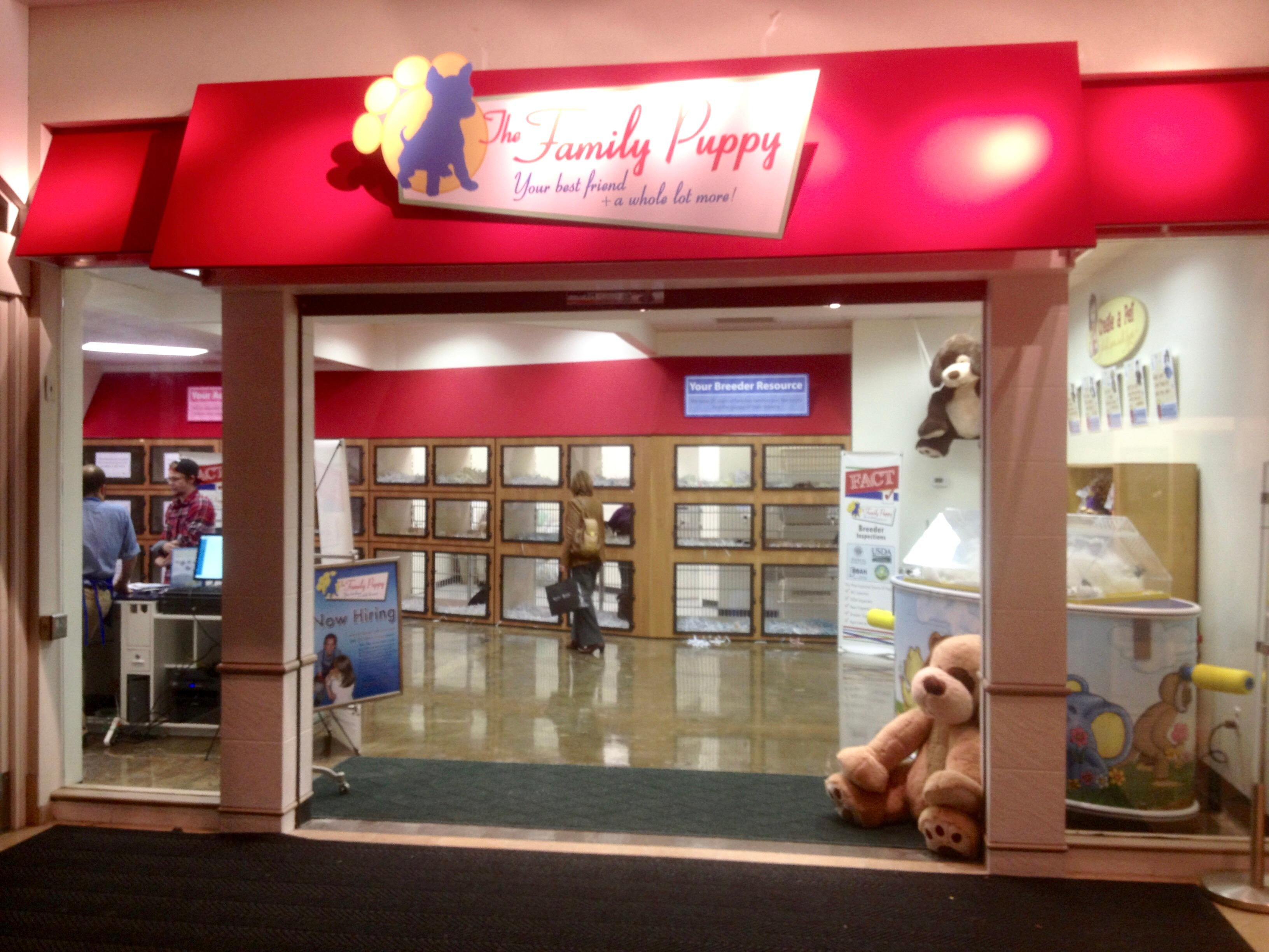 The Family Puppy of Franklin Park Mall image 3
